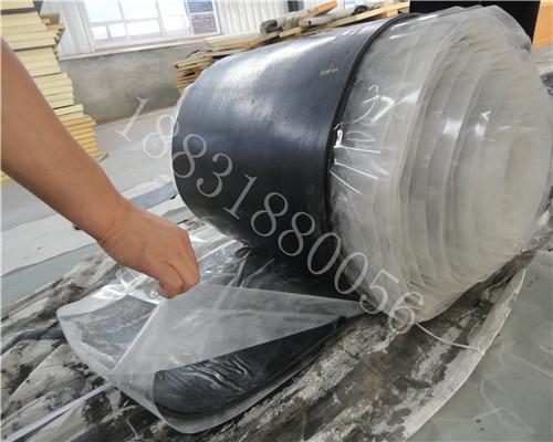 漳州橡胶防渗保护盖板多少钱一米@衡水橡胶止水带厂家