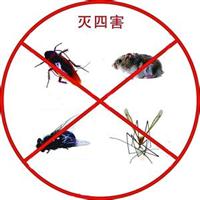 【汕头除四害,汕头专业除四害,汕头灭四害】