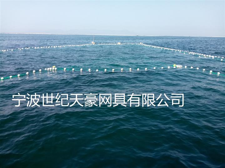 浅海捕捞定置渔网