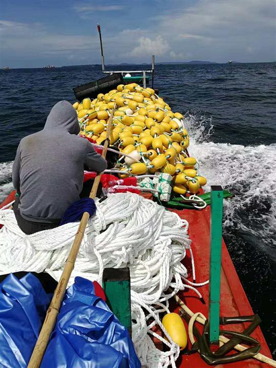 宁波捕捞渔网厂家