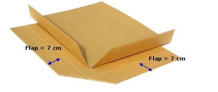东莞纸滑板