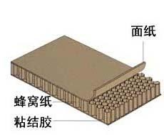 中山蜂窝纸板