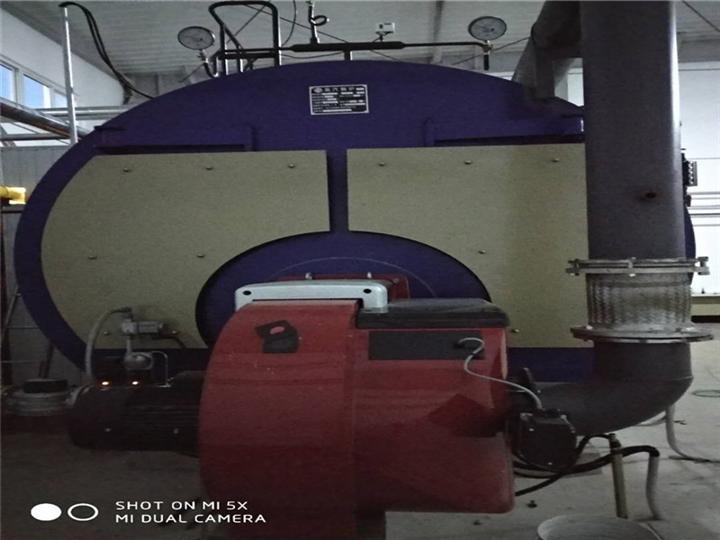 低氮30燃天然气锅炉