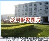长春模型吉林白山白城延吉松原通化四平模型